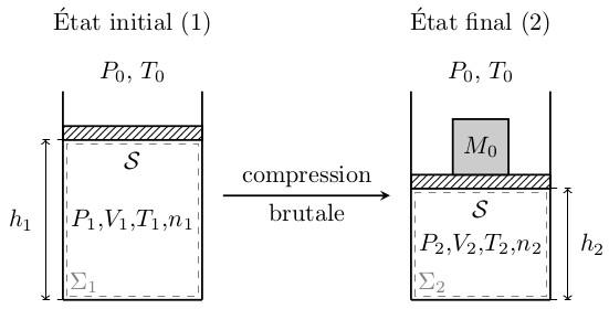 sos-mp.fr - BCPST2 - Thermodynamique - Compression monotherme d'un gaz parfait - Ex3 - schéma1